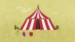 Circus 4808