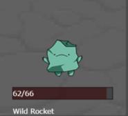 Wild.rocket