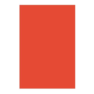 Snake Solutions Studio
