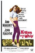 KittenWhipPoster