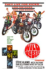 Wild Rebels (film)