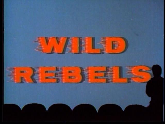 MST3K 207 - Wild Rebels