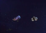MST3k Space Mutiny ships pic 1.jpg
