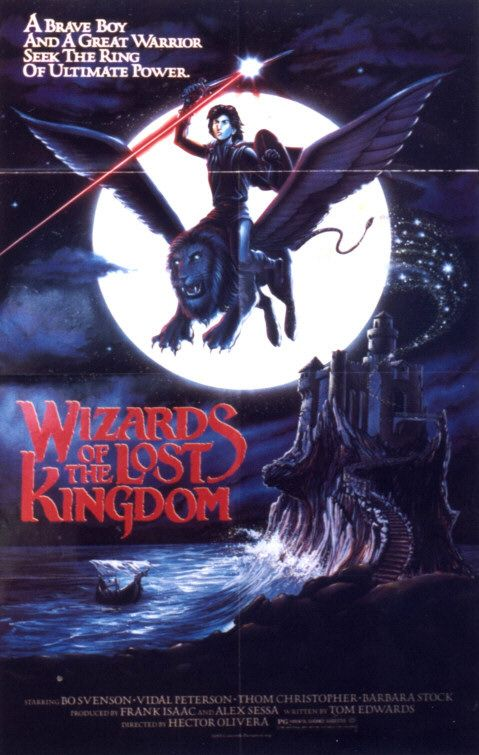 Wizards of the Lost Kingdom (film)