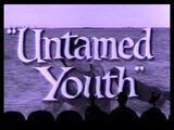 MST3K 112 - Untamed Youth
