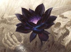 Black Lotus 2.jpg