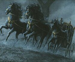 Black carriage.jpg