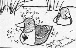 Duck PW.jpg