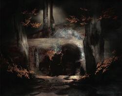 Ulvenwald-forest.jpg