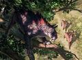 Canopy Stalker.jpg