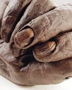 An up-close picture of Old Croghan Man, Ireland