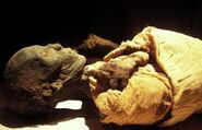 Royal Mummy of Thutmose II