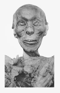 Thutmose II.png