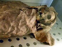 The female mummy, one of two Guanche mummies of Necochea at the Museo de la Naturaleza y el Hombre in Tenerife.