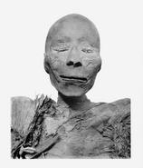 Thutmose I's mummy