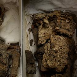 KV21 Mummy A