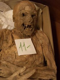 Mummy-1459451200.jpg