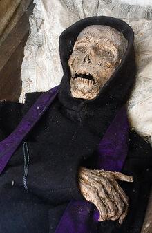 Mummy-1487794577.jpg