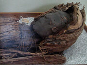 Momia cultura chinchorro año 3000 AC.jpg