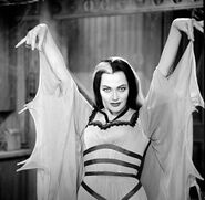 -The-Munsters-the-munsters-32602926-461-450
