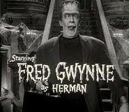 Herman in opening