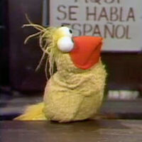 0559 - Caroll as Little Bird