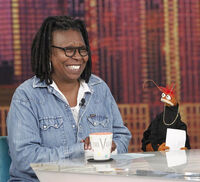 TheView-8-8-14-A