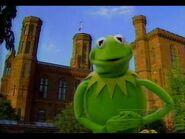 Smithsonian Fantastic Journey Kermit