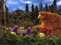 Bear215g