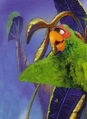 Stevenson the Parrot