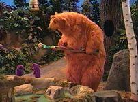 Bear216g
