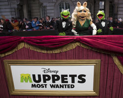 Muppets-Most-Wanted UK-Premiere 011.jpg