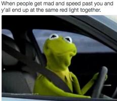 Kermit driving (3)