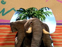 Hole-Elephant