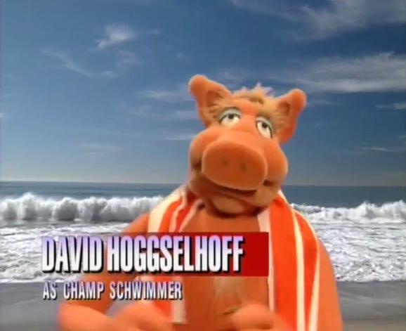 David Hoggselhoff