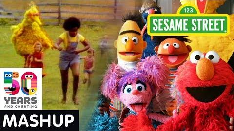 Sesame_Street_Sunny_Days_Show_Open_Through_the_Years