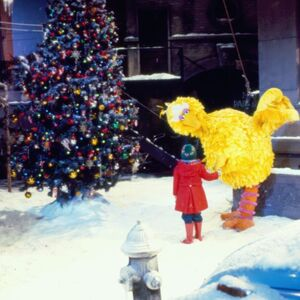 Big Bird and Patty Experience the Tree.jpg