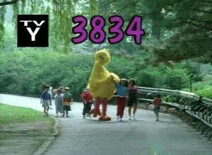 3834.jpg