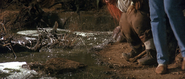 Bog of Eternal Stench 04