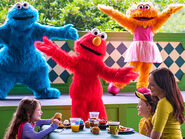 Brunch with elmo and friends