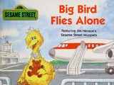 Big Bird Flies Alone
