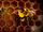 Bee (Sesame Street)