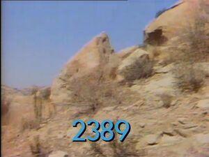 2389.jpg
