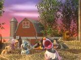 Barn in the USA