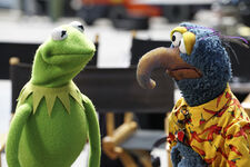 The-muppets-abc-1st-official