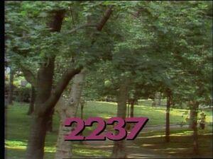 2237.jpg