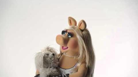 Miss Piggy's Top 5 Greatest Loves