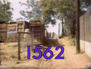 1562.jpg