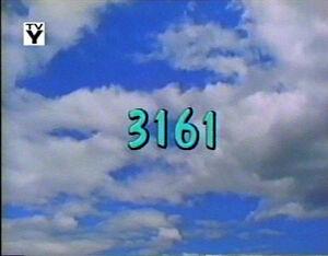 3161.jpg