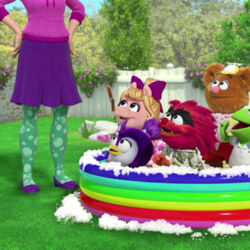 Animal Cleans Up tub.jpg